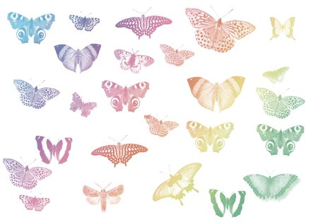 set of different butterflies Stock Photo