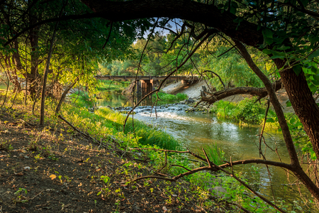 Wooded riverside landscape in Hungary photo