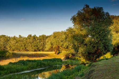 riverside landscape: Wooded riverside landscape in Hungary