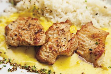 turkey hen: Turqu�a filete gallina con guarnici�n de arroz y salsa de curry Foto de archivo
