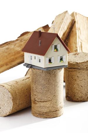 briquettes: Wood briquettes Stock Photo