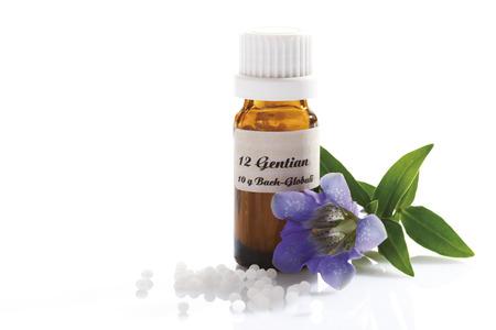 globules: Homeopathic globules, Gentian (Gentiana) Stock Photo