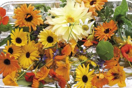 Edible Flowers Stock Photo
