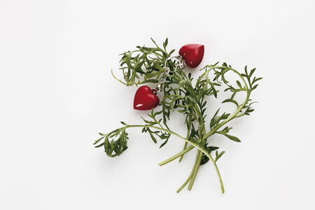 maca: Maca plant with heart shaped key chain