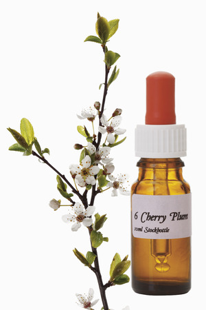 Bottle with Bach Flower Stock Remedy, Cherry Plum(Prunus cerasifera) Imagens