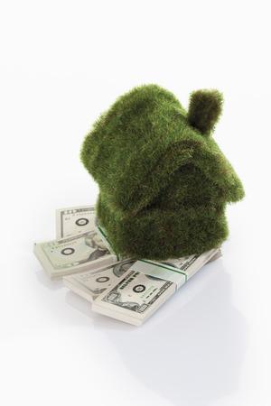 Eco-house on bundles of US dollar notes photo