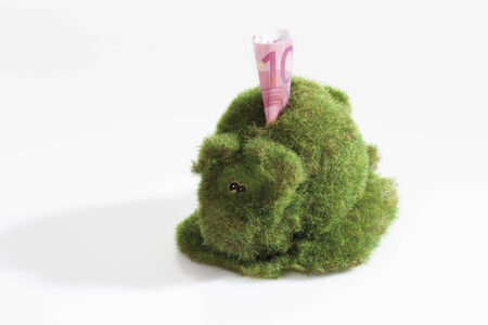 Eco-piggy bank with 10 euro note, overgrown with grass photo