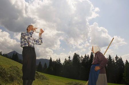relaciones laborales: Austria, Salzburgo, cosecha de heno