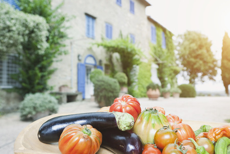 Italy, Tuscany, Magliano, Close up of various vegetables  photo
