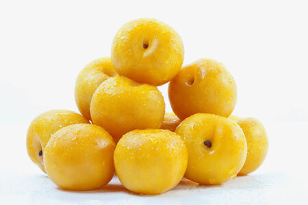 south african: South African yellow plums on white background