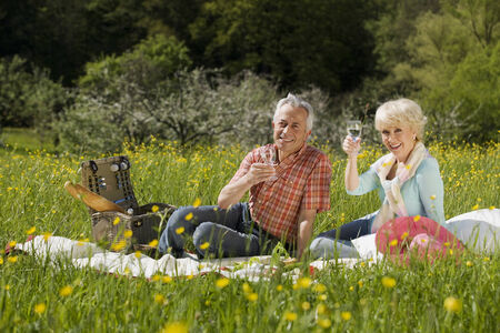 baden wurttemberg: Germany baden wurttemberg tubingen senior couple having picnic in meadow