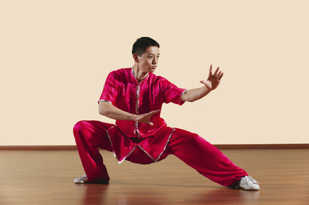 fu: Kung Fu Baguazhang Ban mabu tuizhang young man practicing martial arts Stock Photo