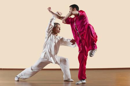 Kung Fu, Changquan, Duilian, Lange Faust Style, zwei Männer, die Kung-Fu-Bewegungen