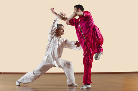 martial arts: Kung Fu, Changquan, Duilian, Long Fist Style, Two men  doing kung-fu moves Stock Photo