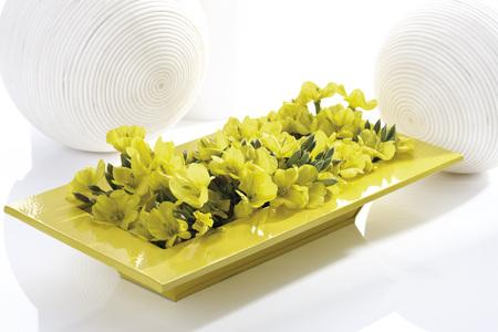 Evening primrose (Oenothera biennis) in yellow ceramic bowl photo