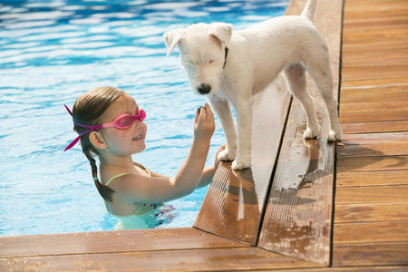 pool water: Young girl playing in swimming pool dog waiting outside