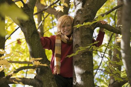 skillful: Boy sitting in tree