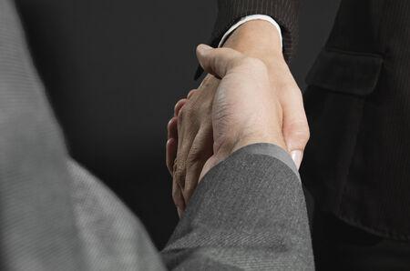 businesspersons: Businesspersons shaking hands