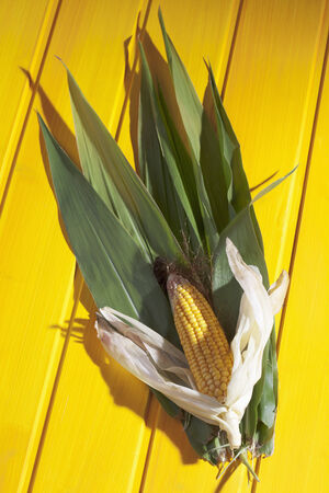 corncob: Corncob on leaves on yellow wooden background