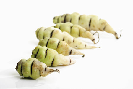 tuberosum: Mashua (Tropaeolum tuberosum)