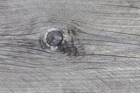 knothole: Gray wooden background with knothole Stock Photo