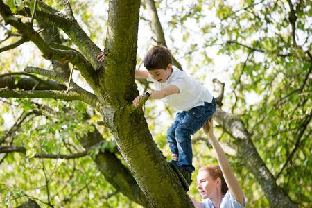 ni�o escalando: Madre que ayuda a los ni�os a subir en el �rbol Foto de archivo