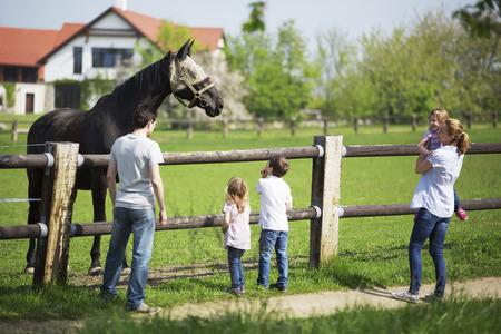 Family visiting paddock