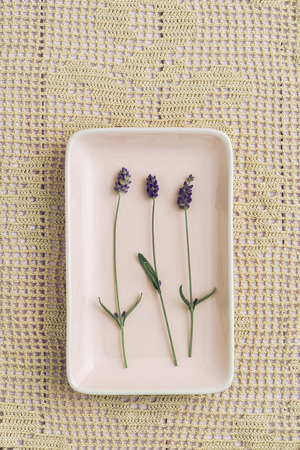 doiley: Three lavender flowers on white cloth