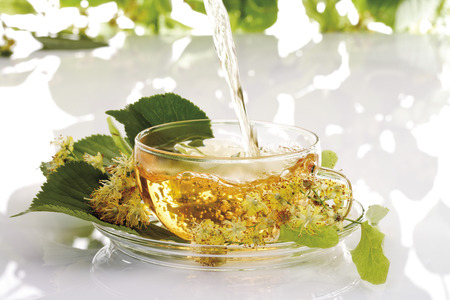 teas: Lime tree blossom tee, herbal health tea in cup Stock Photo