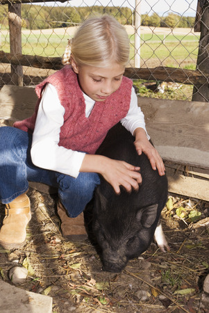 potbellied: Girl with pot-bellied pig in barn