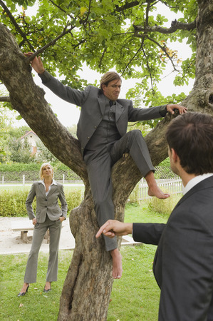 collegue: Germany, businessman climbing on tree, collegues watching Stock Photo