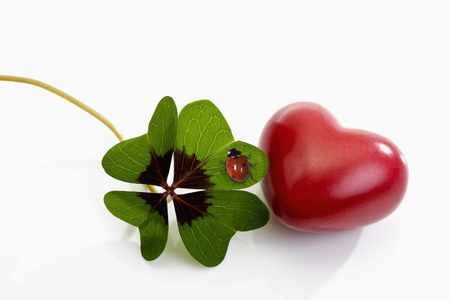 Four leaved clover, red heart and ladybird