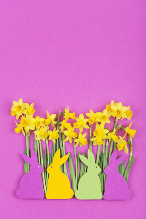 magenta decor: Colorful felt Easter bunnies in front of daffodils Stock Photo