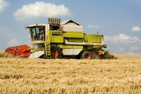cosechadora: Alemania, Baviera, Cosechadoras cosecha de trigo Foto de archivo
