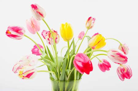 bunches: Bunch of tulips in vase