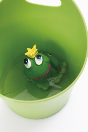 wastepaper basket: Rubber frog king in container on white background