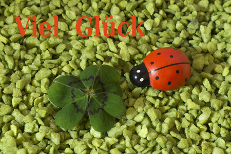 coccinellidae: Greeting Card, Cloverleaf and ladybird Stock Photo