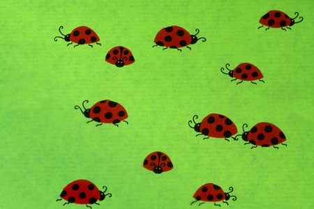 coccinellidae: Ladybirds on green background