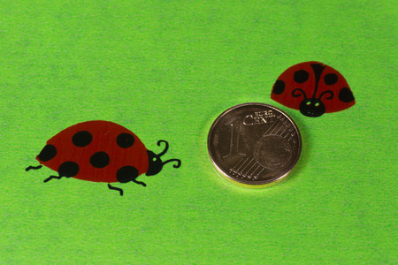 coccinellidae: Greeting card with ladybirds and cent coins