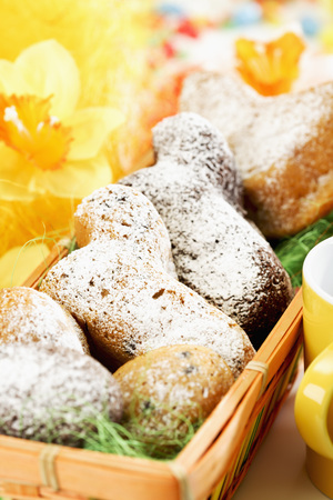 paschal lamb: Easter pastry, Easter lambs with icing sugar in basket, daffodils