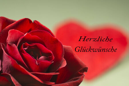 best wishes: Greeting card, heart and rose, Valentine day, Best wishes Stock Photo