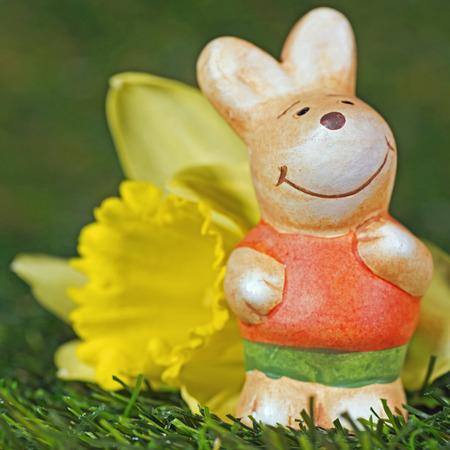 twee: Easter bunny figurine with daffodil Stock Photo