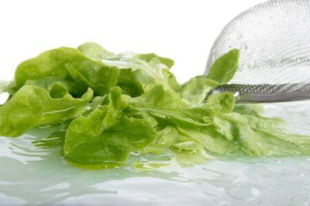 a colander: Washing lettuce, colander