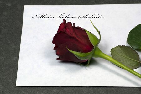 dearest: Red rose on envelope, my dearest Stock Photo