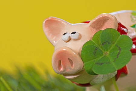 cloverleaves: Lucky charm pig, figurine with cloverleaf