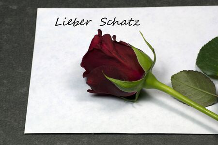 dearest: Red rose on envelope, my dearest Stock Photo