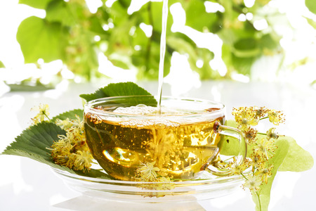 limetree: Lime blossom tea, Lime-tree blossoms of Large Leaved Linden Stock Photo