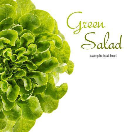 copy space: Butterhead lettuce, copy space Stock Photo