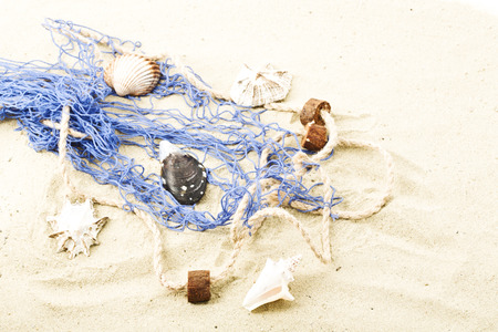 fishing net: Fishing net and clams at beach Stock Photo