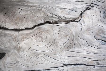 Fendas e estruturas em madeira